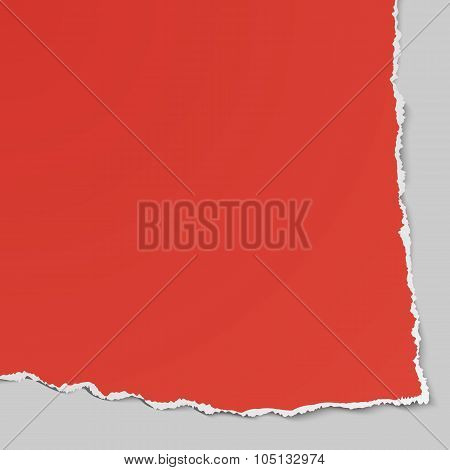 Corner Of Torn Paper. Use In Design Banners, Flyer, Corporate Report, Presentation, Advertising, Mar
