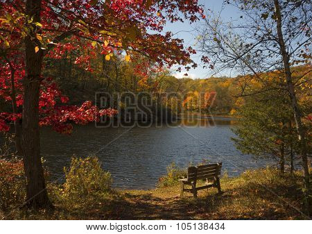 Scenic Autumn Lake
