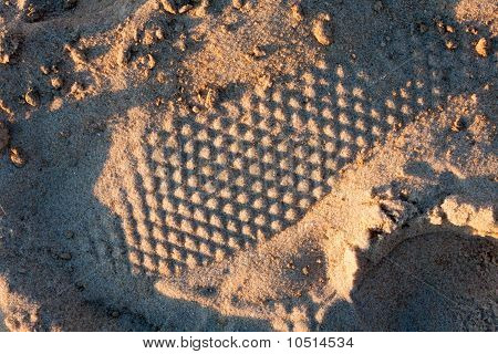 Shoeprint Pattern in Sand