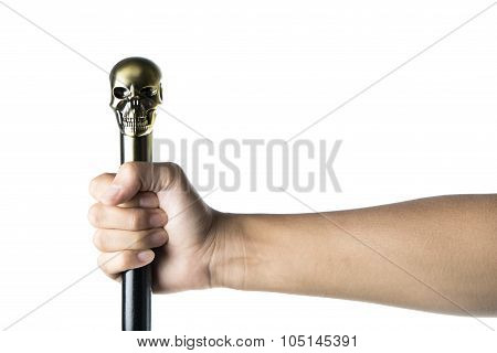 Staff With Skull Holding In Hand, Wizard