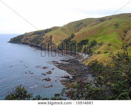 Coromandel Coastline, North Island, New Zealand