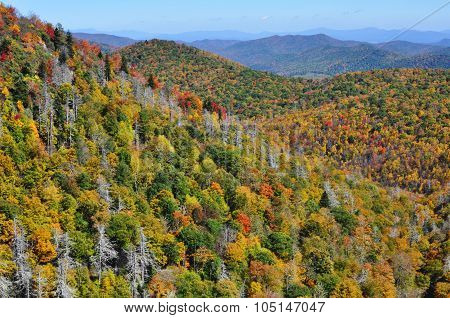 Fall colors in the Appalachian Mountains during autumn at the Blue Ridge Parkway East Fork Overlook