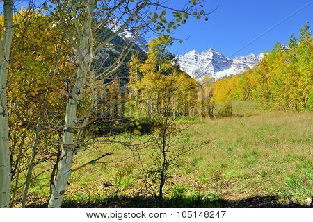 Snow Covered Mountains With Colorful Yellow, Green And Red Aspen During Foliage Season