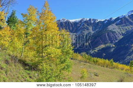 Snow Covered Mountains With Colorful Aspen During Foliage Season