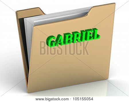 Gabriel- Bright Green Letters On Gold Paperwork Folder