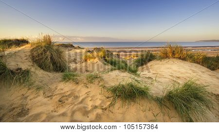 Beautiful Sunrise Over Sand Dunes System On Yellow Sand Golden Beach