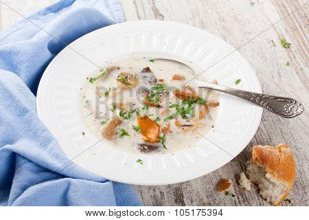 Mushtoom cream soup