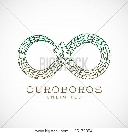 Abstract Vector Infinite Ouroboros Snake Symbol, Sign or a Logo Template in Line Style. Isolated