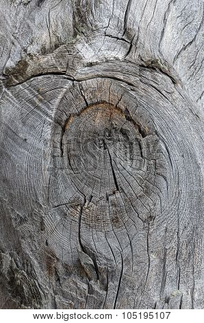 Axe Hewn Wood Background With Knot