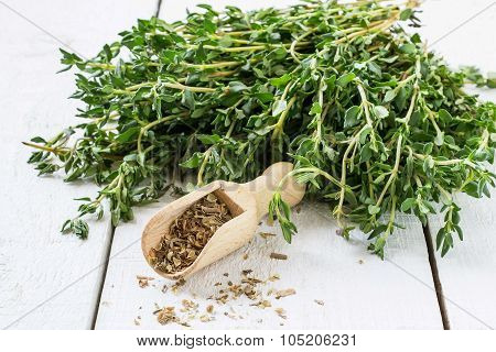 Green Sprigs Of Thyme And Dried Thyme In The Scoop