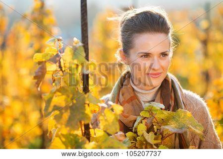 Woman Winegrower Standing Among Grape Vines In Autumn Vineyard