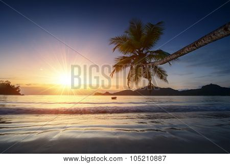 Empty tropical beach at sunset