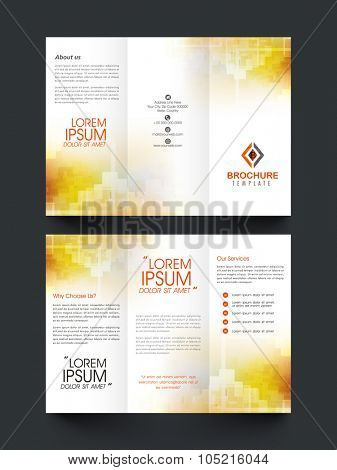 Professional glossy Trifold Brochure, Template, Catalog or Banner design for your business.