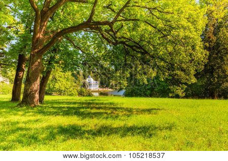View Of Park In Pushkin In Summer Day