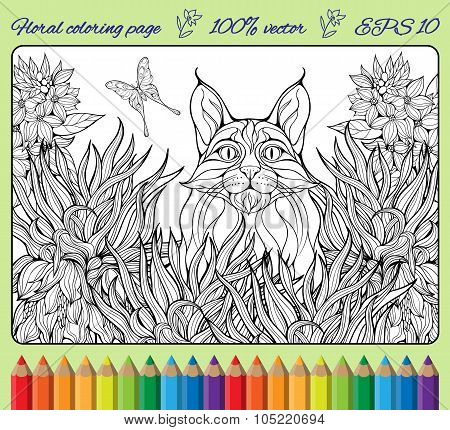 coloring page with flowers, butterfly and lynx in a grass