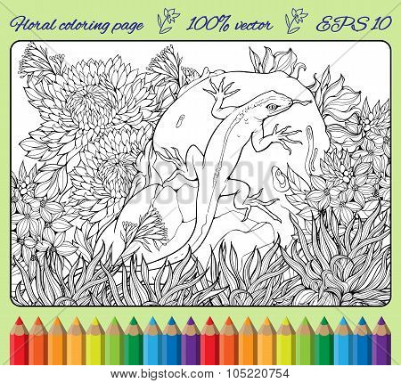 coloring page with flowers, grass, rock and lizard