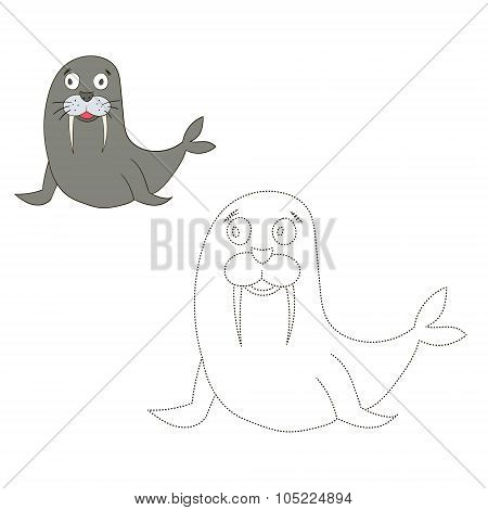 Connect the dots game seal walrus vector