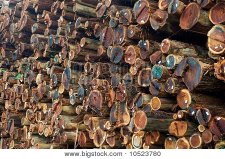 Stacked Redwood Lumber