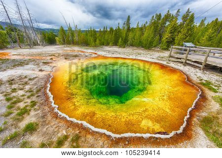 Morning glory pool from above. Yellowstone National Park, Wyoming, USA