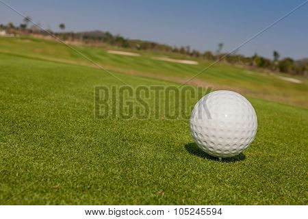 The View Of Macro Golf Ball And The Green Golf Course Background.