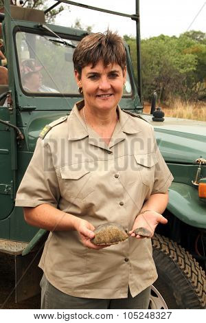Gauteng Department Of Nature Conservation Representative Showing Pieces Of Trimmed Horn.