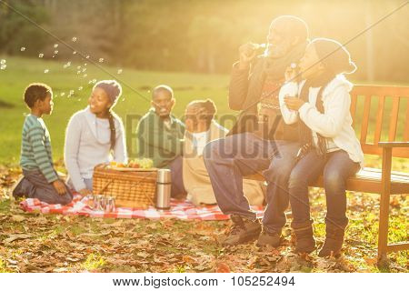 Happy family having a picnic in parkland