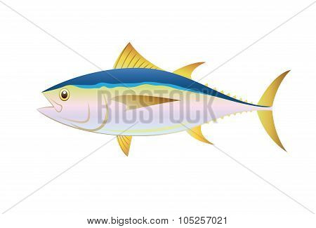 Illustration tuna fish