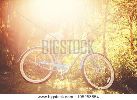 an old bike leaning against a tree with a summer hat on the seat toned with a retro vintage instagram filter