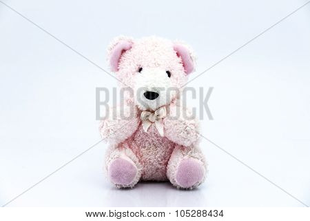 Pink Teddy Bear Isolated On White Background