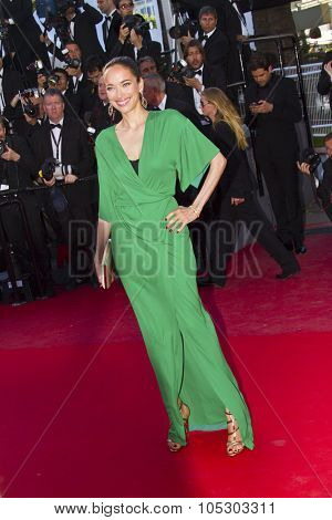 CANNES, FRANCE - MAY 25: Carmen Chaplin arrives at 'Venus In Fur' Premiere during the 66th Annual Cannes Film Festival at Grand Theatre Lumiere on May 25, 2013 in Cannes, France.