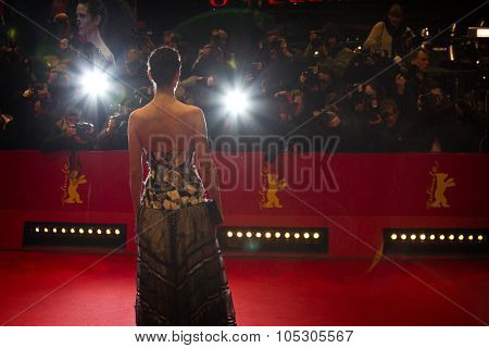 BERLIN, GERMANY - FEBRUARY 12:  A general view of atmosphere the 'Aloft' premiere during 64th Berlinale Festival at Berlinale Palast on February 12, 2014 in Berlin, Germany.
