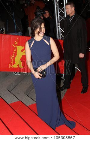 BERLIN, GERMANY - FEBRUARY 12: Actress America Ferrera attends the 'Cesar Chavez' premiere during 64th Berlinale Festival at Friedrichstadt-Palast on February 12, 2014 in Berlin, Germany.