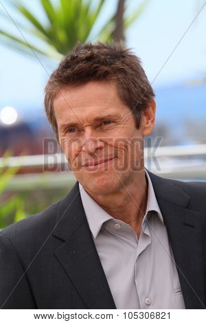 CANNES, FRANCE - MAY 14: Jury member Willem Dafoe attends the Jury photocall during the 67th Annual Cannes Film Festival on May 14, 2014 in Cannes, France.