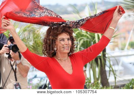 CANNES, FRANCE - MAY 21: Sophia Loren attends a photocall to present Cannes Classics at the 67th Annual Cannes Film Festival on May 21, 2014 in Cannes, France.