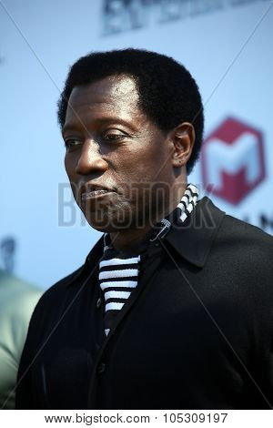 CANNES, FRANCE - MAY 18:  Wesley Snipes attends a photocall for 'The Expendables 3' at the Carlton Hotel on May 18, 2014 in Cannes, France.