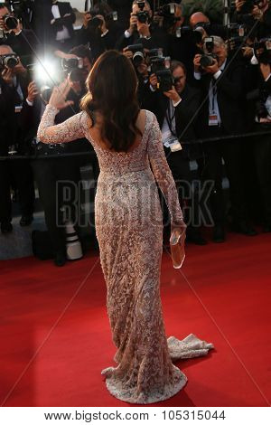 Andie McDowell    attends the premiere of 'The Sea Of Trees' during the 68th annual Cannes Film Festival on May 16, 2015 in Cannes, France.