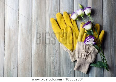 Yellow gardener's gloves and sensitive blossom on grey wooden background