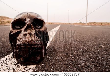 Skull on the Asphalt Street