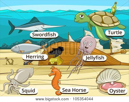 Underwater animals and fish with names