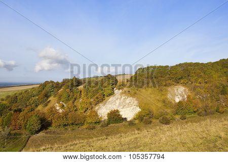 Valley Woods In Autumn