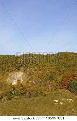 Colorful Wooded Valley