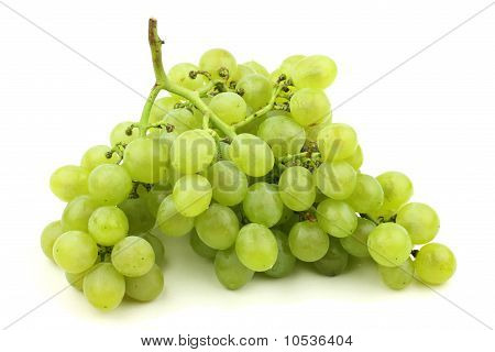 bunch of fresh grapes on white background