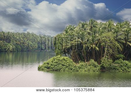 Serene Backwaters At Kerala