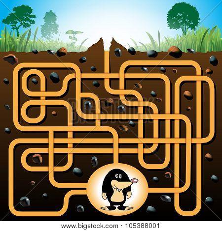 Mole And Molehill Maze Game