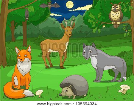 Forest with cartoon animals educational game