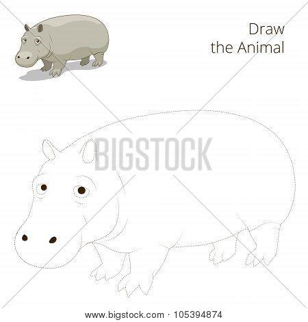 Draw the animal educational game for hippopotamus