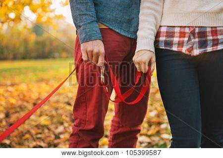 Close Up On Two Hands Of Couple Holding Dogs Lead Outside