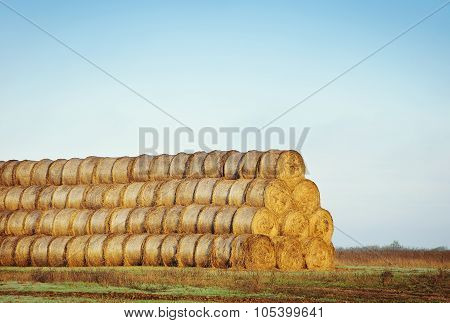 Bales Of Hay On The Field