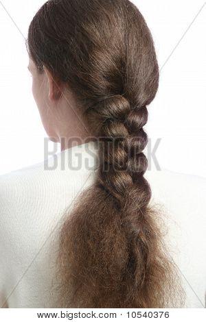 Hair In Long Braid