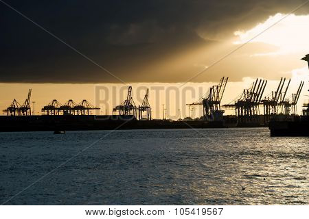 Cranes in a harbor at sunset